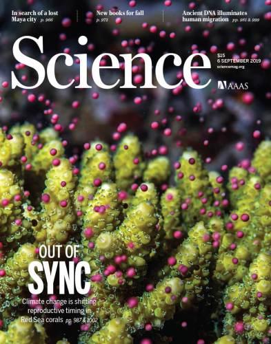 תמונת השער של כתב העת Science (באדיבות כתב העתScience )