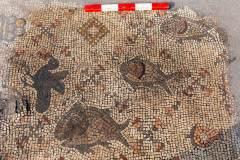 """שלושה דגים בגדלים שונים מעיטור שטיח הפסיפס שהתגלה בסוסיתא. צילום: ד""""ר מיכאל איזנברג"""