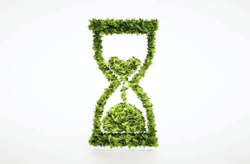 הזמן אוזל - גם צמחים נכחדים. איור: shutterstock