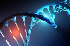 גדילי DNA. איור: shutterstock