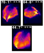 מפת חום (אינפרה-אדום) של מסכות מהסוג המוצע, בטמפרטורות שונות. האזורים החמים (צהוב ואדום) מעידים על כיסוי מלא של סיבי פחמן. צילום: דוברות הטכניון