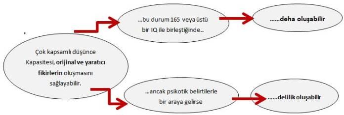 deha-delilik1