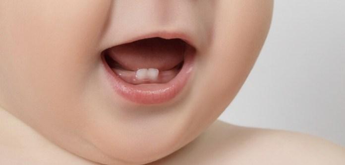 Süt Dişlerini Saklamak Hayat Kurtarabilir