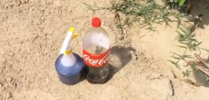 Gazı Kaçmış Colayı Farklı Amaçlar İçin Kullanın