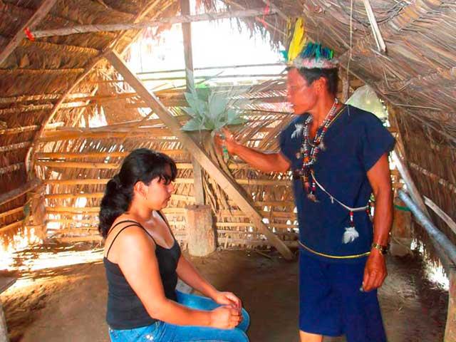 ayahuasca_g1