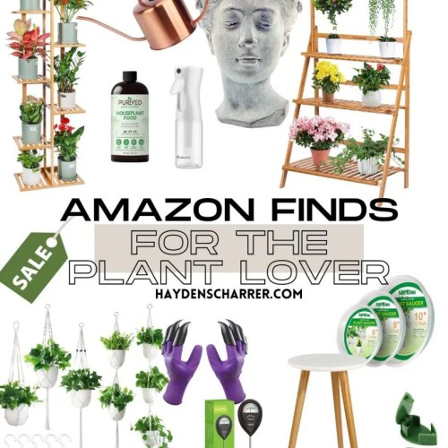 Amazon Finds For The Plant Lover