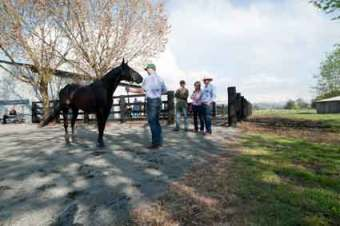 the-mcgraths-inspect-apollos--full-brother
