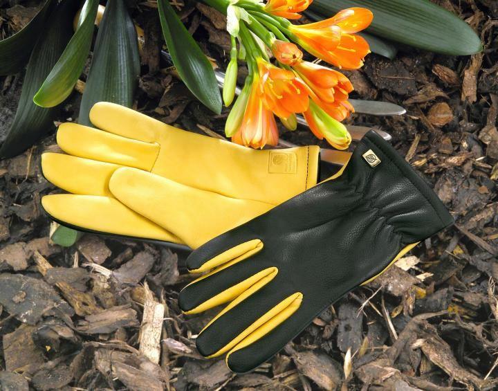 Ladies Dry Touch Gold Leaf Gardening Gloves Hayes Garden World