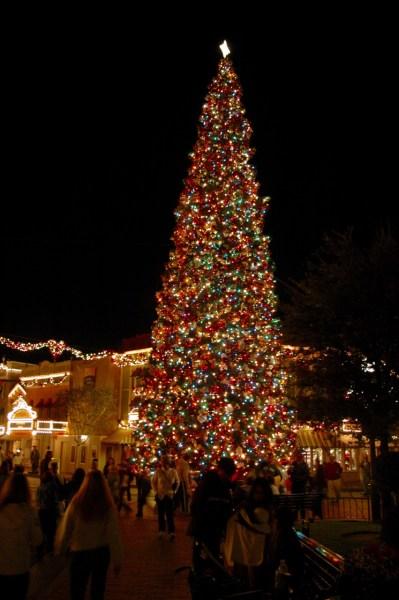 disneyland park christmas tree town square