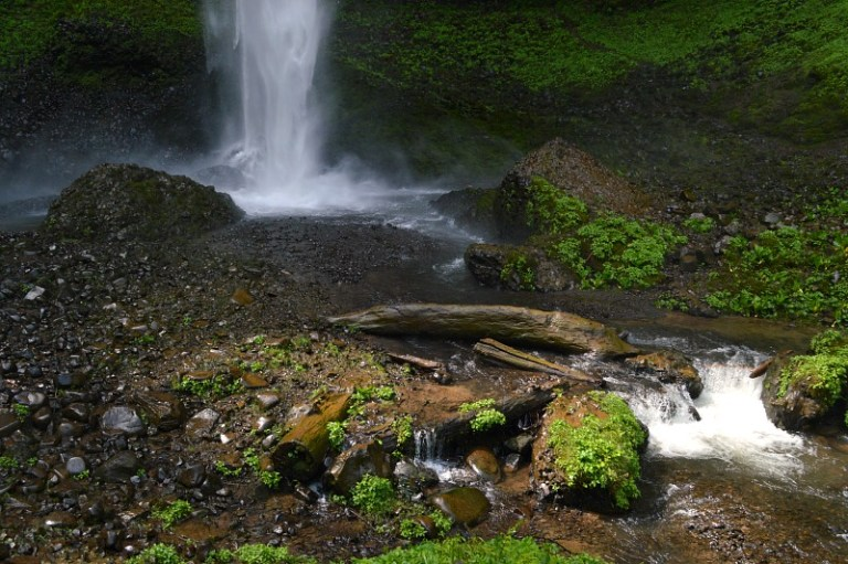 Explore Columbia Gorge on a tour from Portland, Oregon