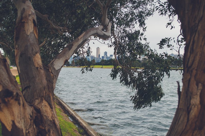 Melbourne Skyline from Albert Park Lake