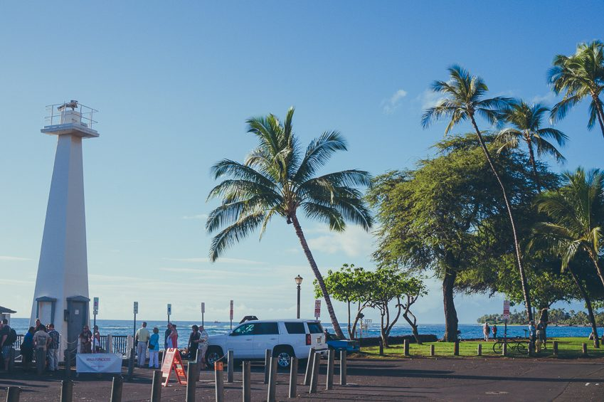 Solo Travel Guide to Maui: go on a whale watching tour from Lahaina Harbor