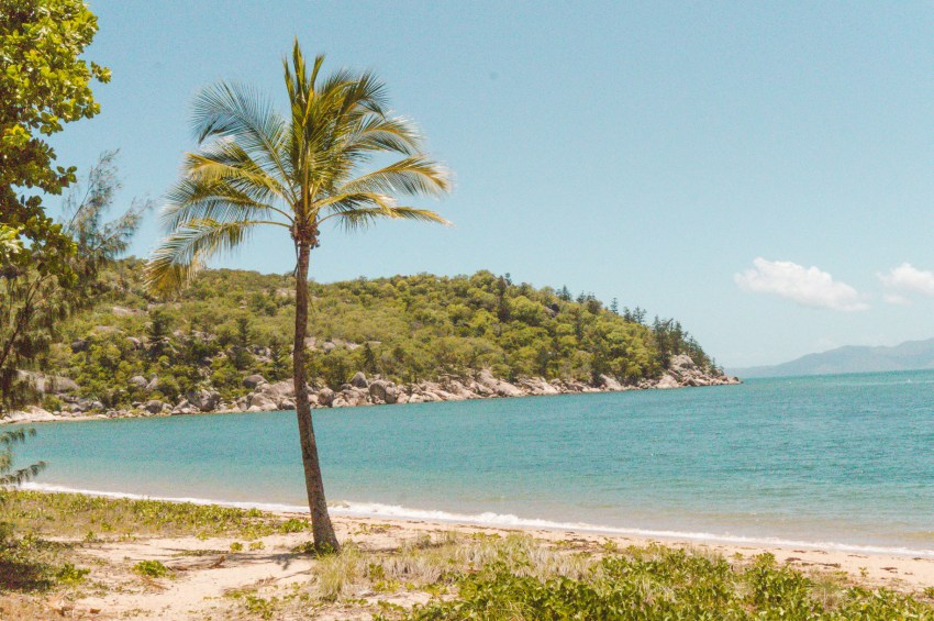 Picnic Bay, the best of Magnetic Island, Australia