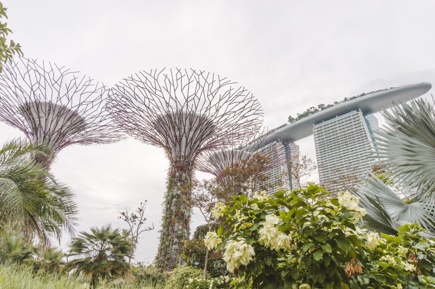 Singapore photos: visiting Gardens by the Bay is one of the best things to do in Singapore.