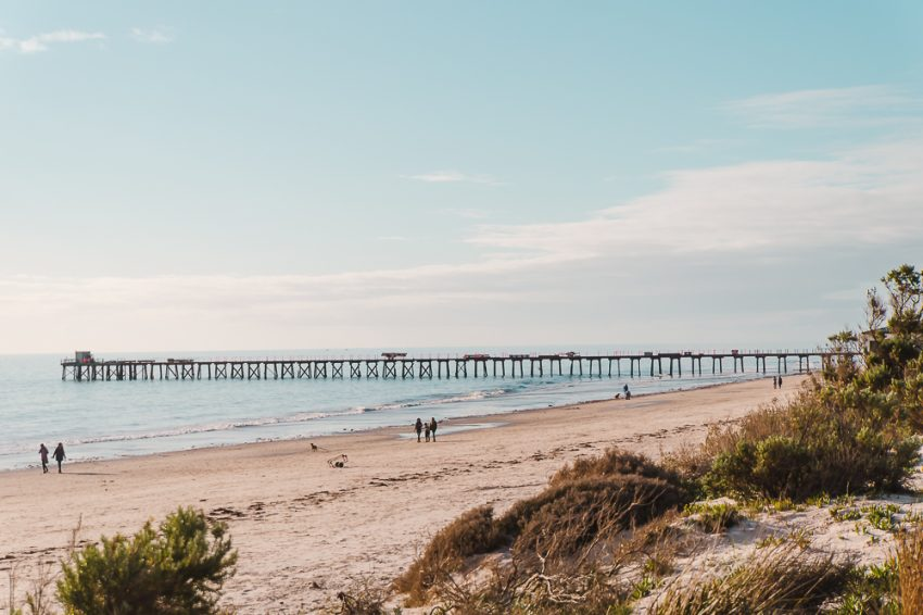 day trips from adelaide australia