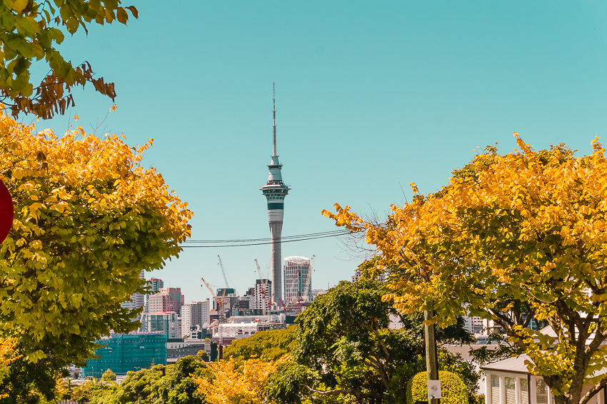 Auckland travel guide: Sky Tower views from Ponsonby in Auckland, New Zealand