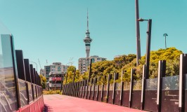 Things to do in Auckland: Light Path