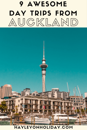 9 top day trips from Auckland