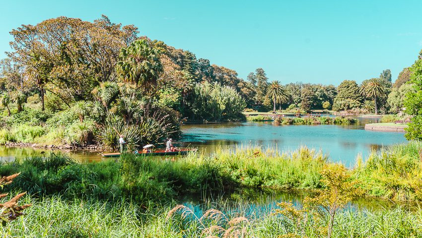 Free things to do in Melbourne: stroll through the Royal Botanic Gardens