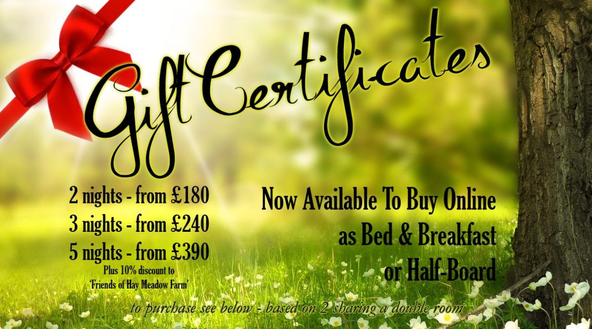 Gift Certificates for Hay Meadow Farm