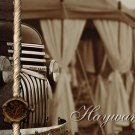Haywards Safaris