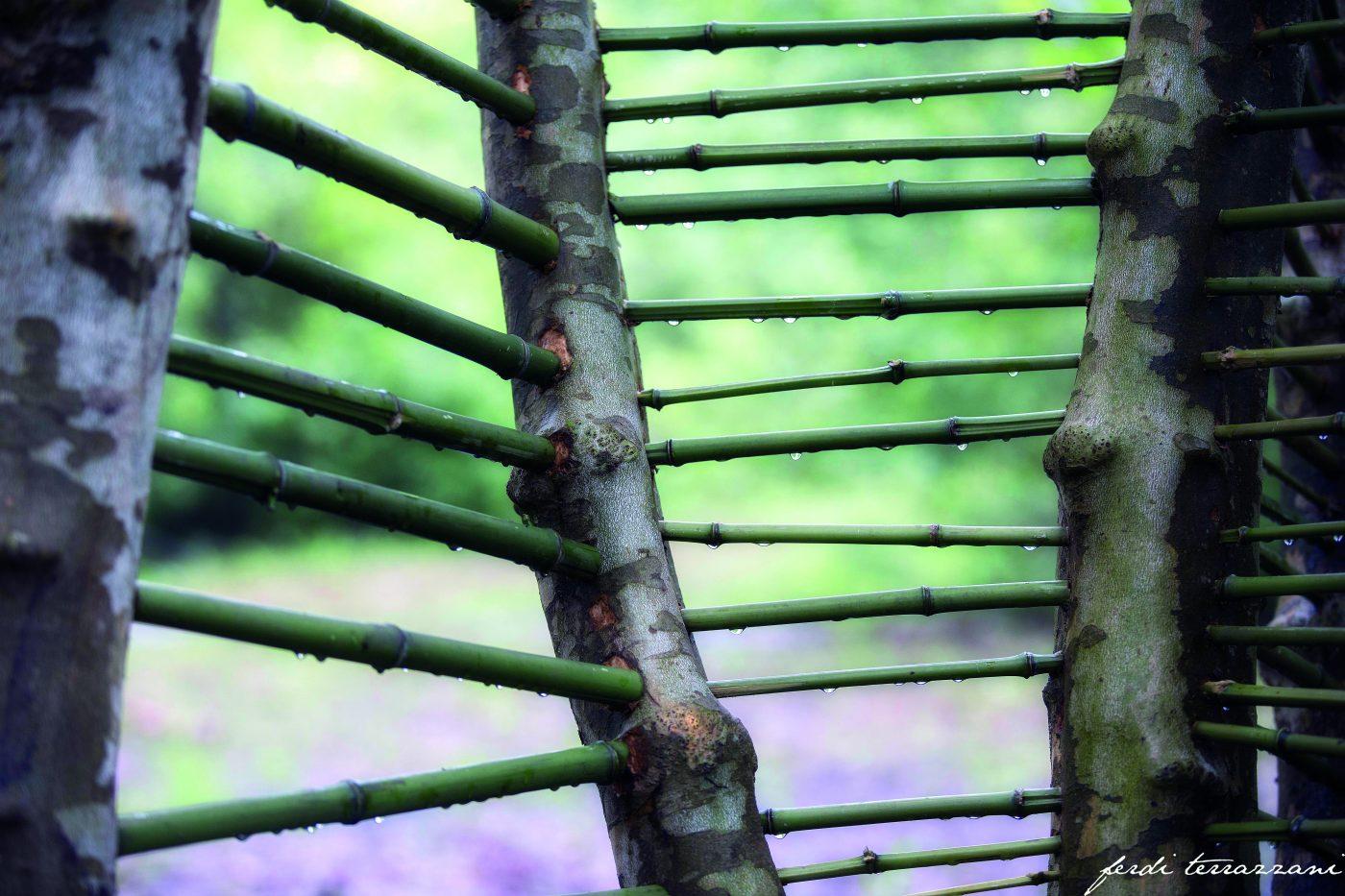 humus park - land art
