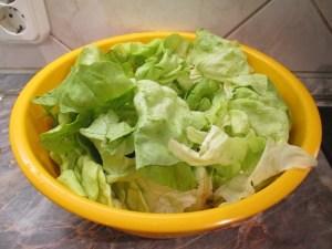 Saláta levelek