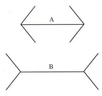 segmentos