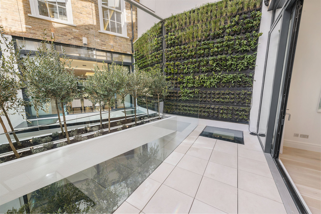 Green living wall and olive planting with glazed feature at Clareville Street, London SW7 - Lurot Brand