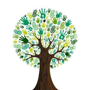 Milieuzorg in de zorg - Groene handen in een boom