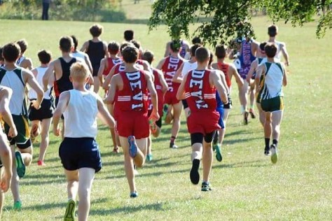 Cross country teams dominates at regionals and sectionals