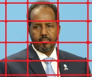 hassan sheikh mahamoud - CIA ET MOSSAD