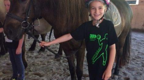 Ausflug zum Island-Pferde