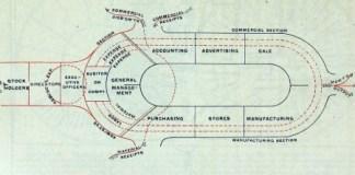 Organizational Body