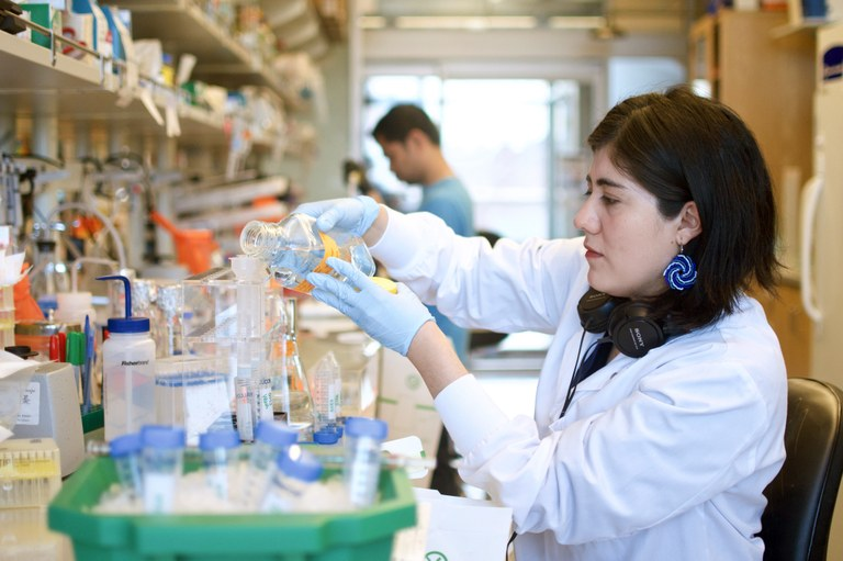Inside a Seattle lab working to develop a COVID-19 vaccine — High ...