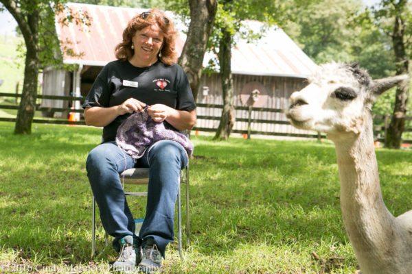 2016 August Apple Hill Farm Knitting-0421