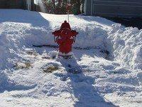 Adopt_a_hydrant_Web