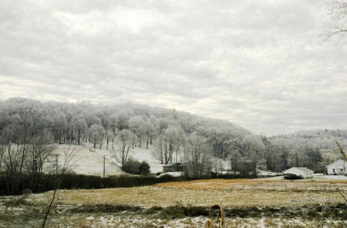 Laurel Creek/Rominger area - Photo by Jesse Wood