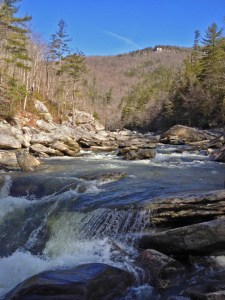 Here's another image of the Linville Gorge Wilderness Area. Photo by Todd Bush
