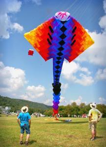Kite Festival 017aa