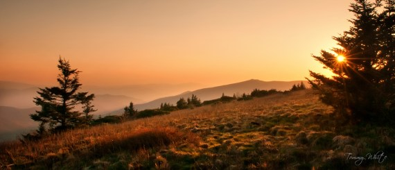A Roan Mountain Sunset - Photo by Tommy White