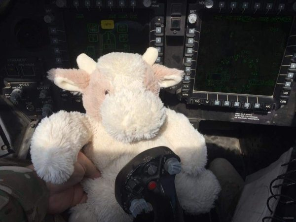 Baby Cow behind the wheel of a U.S. Army helicopter.
