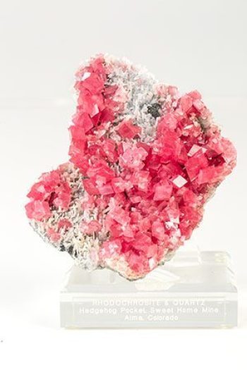 Rhodochrosite, a red manganese carbonate mineral from Colorado, is one of more than 200 museum quality specimens donated to Appalachian State University. Photo credit: Marie Freeman .
