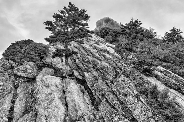 """Grandfather Mountain - June 13, 2014"" by Skip Sickler"