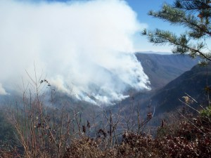 Images of the fire from Thursday. Courtesy of U.S. Forest Service