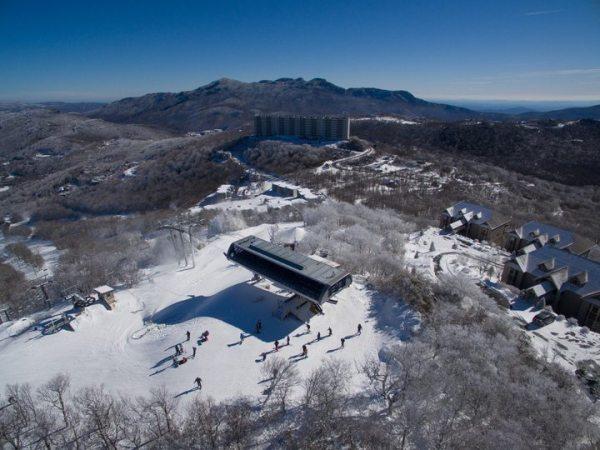 January snow 2016. Photo by Todd Bush.