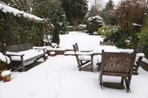 Restaurant Supplies and Tips for This Winter