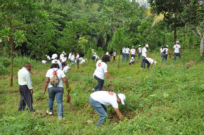 Empleados de Claro mientras participaban en la jornada de reforestación celebrada en la comunidad de Majagua, Villa Altagracia.