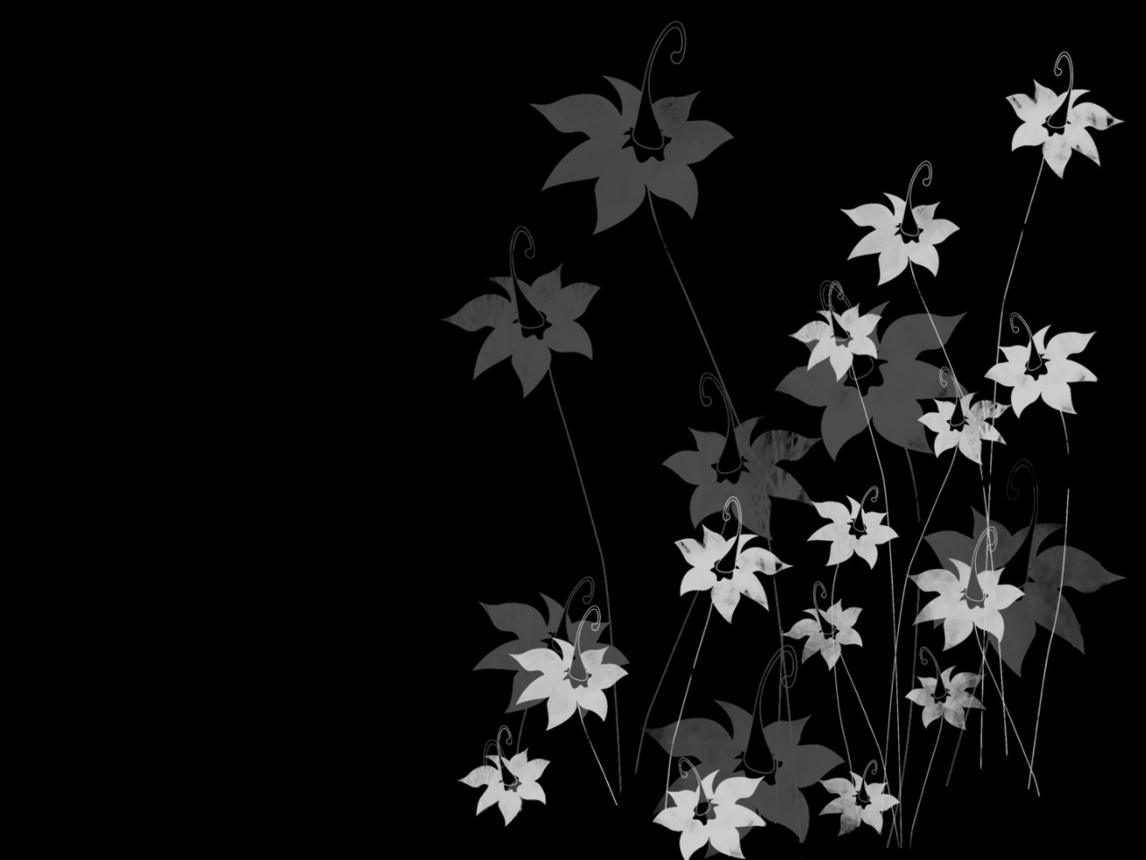 floral wallpaper with black