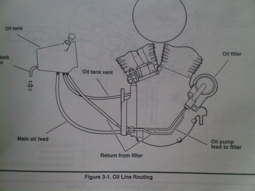 99 softail wiring diagram 1985 corvette harley oil line routing great installation of need davidson forums rh hdforums com evo sportster